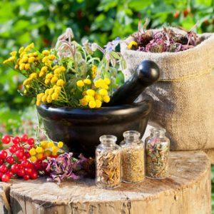 Лечение миомы народными средствами: рецепты которые помогли