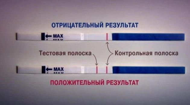 результаты теста на беременность